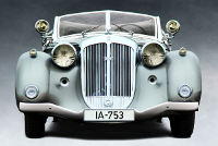 Fascia